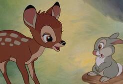 Geyik avcısına Bambi izleme cezası