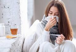 Grip dışındaki virüslerin çoğu gergedan virüsü