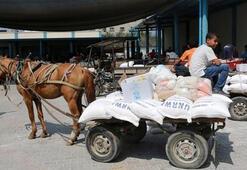 BMden Filistine 350 milyon dolarlık yardım çağrısı