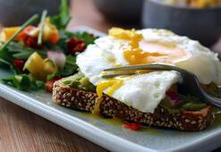 Kahvaltıda protein almanın önemi