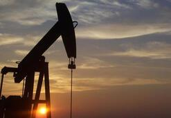 Petrolün varili 67,81 dolara yükseldi