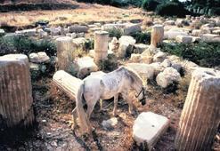 Tarih içinde yaşayan şehir: Aphrodisias