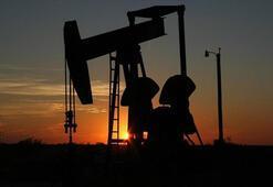Petrolün varili 67,16 dolar