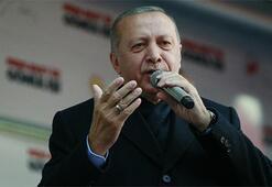 Cumhurbaşkanı Erdoğan: Be ahmak, neyin intikamını alıyorsun