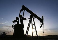 Petrolün varili 66,55 dolar