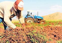 Brisa ve İş'ten çiftçiye destek