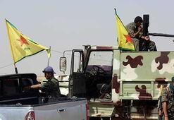 Haşdi Şabi PKKnın Sincardan çıkarılmasını engelledi