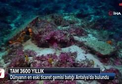 Dünyanın en eskisi Türkiyede bulundu