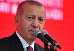 Erdoğan, Avrupa şampiyonu Akgülü kutladı