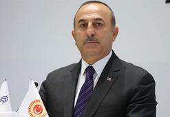 Cezayirlilerden Dışişleri Bakanı Mevlüt Çavuşoğluna destek