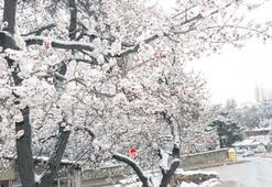 Baharda yağan kar yolları kapattı