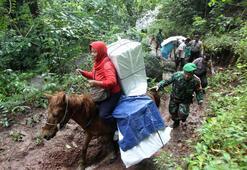 Endonezya seçimlerinde 270den fazla sandık görevlisi hayatını kaybetti