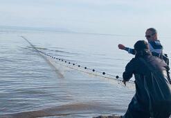 Görür görmez harekete geçtiler Van Gölünde...