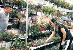 Çiçek kentinde festival coşkusu