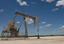 ABDde petrol kule sayısı arttı