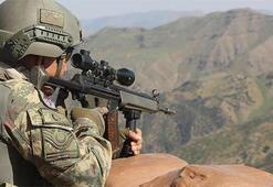 Mardinde 2 terörist etkisiz hale getirildi