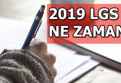 2019 LGS ne zaman MEB LGS kılavuzu