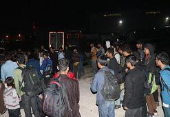 Adanada 50 düzensiz göçmen yakalandı