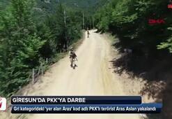 PKKlı terörist Aras Faraşin yakalandı