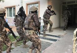 Bayram Şekeri operasyonu 35 tutuklama...