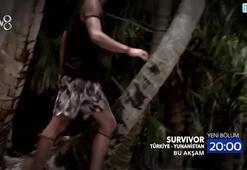 Survivor 85. Bölüm Fragmanı İzle