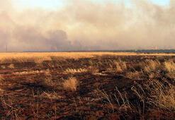 Suriyede binlerce dönümlük ekili tarım arazisi yakıldı