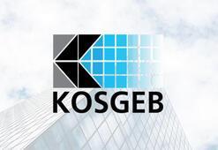 KOSGEB başvurusu nasıl yapılır e-Devlet giriş