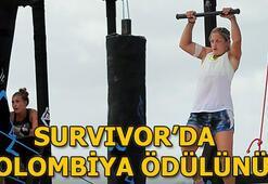 Survivorda ödül oyununu hangi takım kazandı Survivor 2019 Kolombiya ödülü