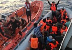 Sabahın ilk ışıklarında düğmeye basıldı 79 kişi yakalandı