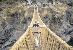 Organik köprü