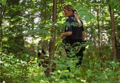 Ormanda kurt maskeli tecavüz