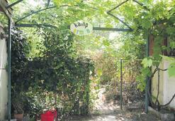 Kamp ruhsatı 'eksik evraktan' beklemede