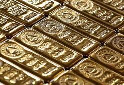 Türkiyenin altın üretimi yıllık 50 tona çıkabilir