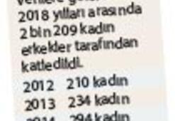 6 ayda 214 kadın  cinayeti işlendi