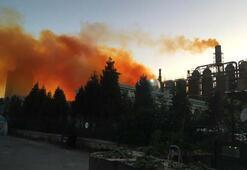 Son dakika   Kütahyada azot fabrikasında patlama