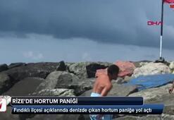 Rizede denizde hortum paniği