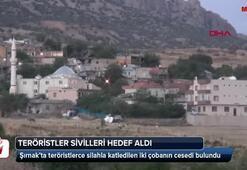 Şırnakta teröristler 2 çobanı öldürdü
