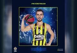 Leo Westermann, Fenerbahçe Bekoda