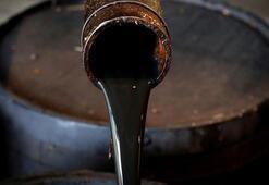Küresel petrol arzı haziranda arttı