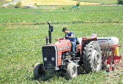 Diplomalı çiftçiye 100 bin lira hibe