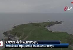 Karadeniz'in altın postu: Yason