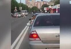 Rusyada akılalmaz olay Kaplan otomobilden atladı