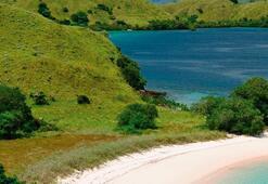 Komodo Adası 2020de kapatılacak