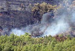 Orman yangınlarına yerli koruma