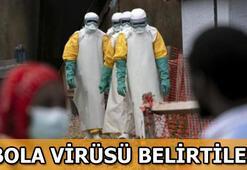 Ebola virüsü nedir Ebola virüsü belirtileri nelerdir