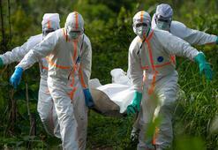 Ölümcül salgın bir yılını dolduruyor