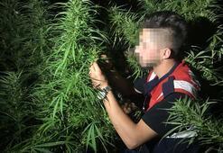 Uşakta fotokapanlı uyuşturucu operasyonu