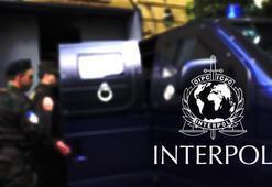 Interpolden skandal 162 teröristi kırmızı bültenden çıkarmış