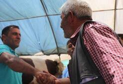Kurban pazarında ilginç olay: Pazarlık ettiği adamın parmaklarını kırdı
