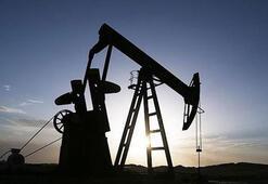 Küresel petrol arzı temmuzda azaldı